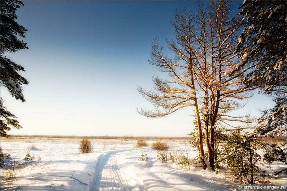 Зима в Мещёре: хрустальные утра, серебряные дни