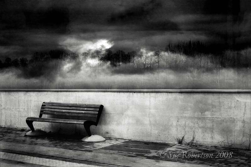 Фотограф Sue Robertson