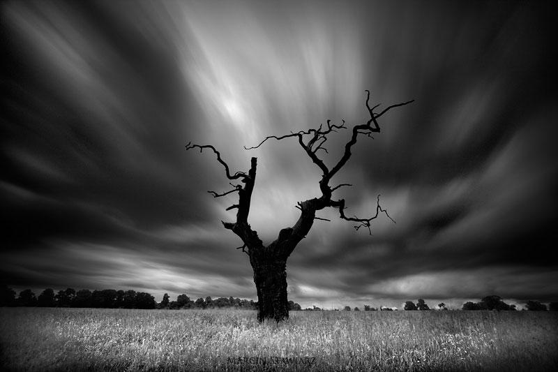 Фотограф Marcin Stawiarz