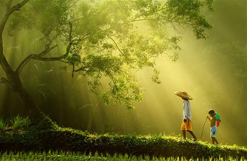 Rarindra Prakarsa – природа и люди